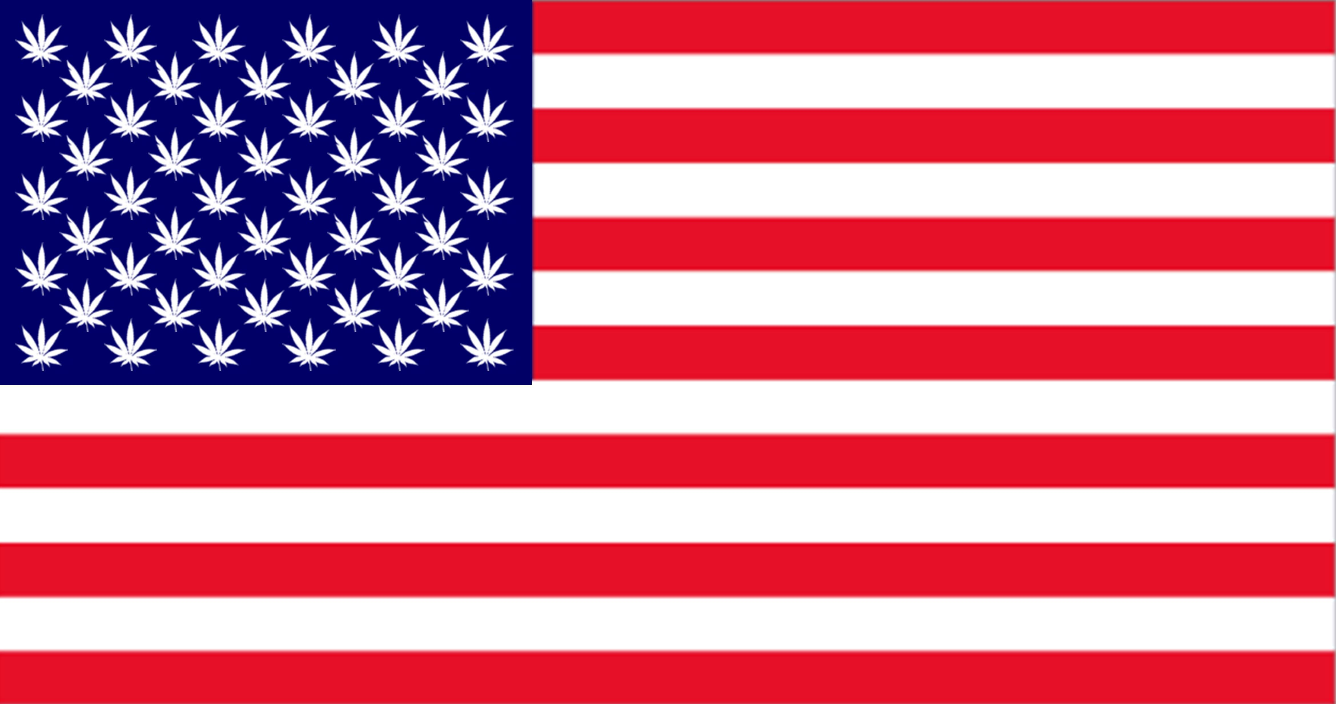 Image of US flag with pot leaves rather than stars