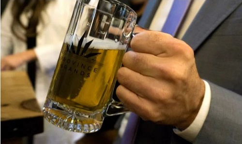 BeerBrewedFromCannabisImageProvinceBrandsViaTheGuardian