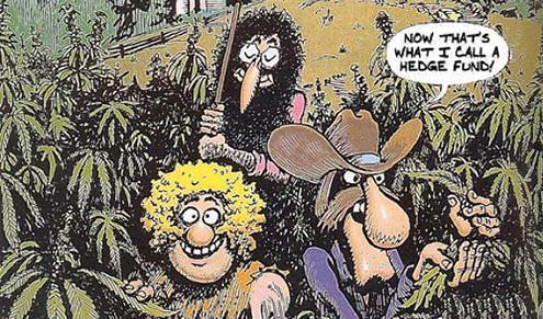 "Creator of the ""Fabulous Furry Freak Brothers"" reflects on weed's long, strange trip - Cannabis News"