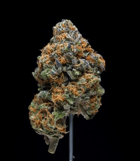 Image of Grape Ape marijuana strain