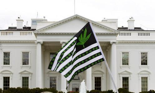 These 4 States Legalized Recreational Marijuana but Each Is Doing It (or Not) in Its Own Way - Cannabis News