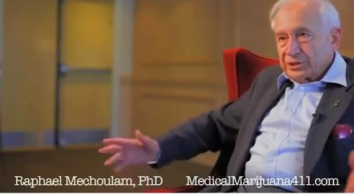 Cannabis research pioneer hopes latest discovery is not overlooked, again - Cannabis News