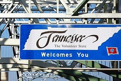 Tennessee's Next Governor: Costs And Benefits Of Medical Marijuana Divide The Candidates - Cannabis News