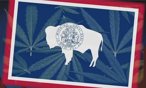 WyomingMarijuanaFlagImageKgwn.tv