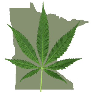 Minnesota map and marijuana leaf