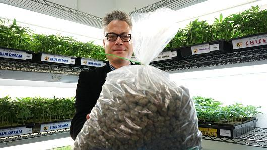 Image of Andrew DeAngelo of Harborside Health Center holding $9,000 worth of medicinal marijuana