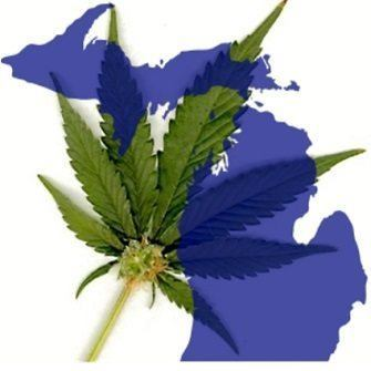 Image of Safer marijuana legalization in Michigan logo